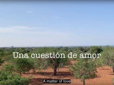 Una cuestión de amor